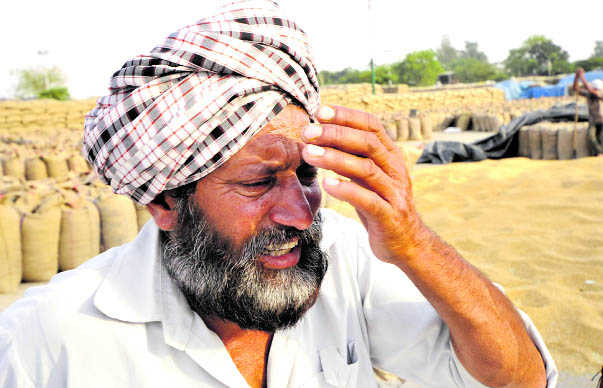 Sikh farmer suicide